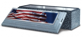 <h5>Vault with American Flag</h5>